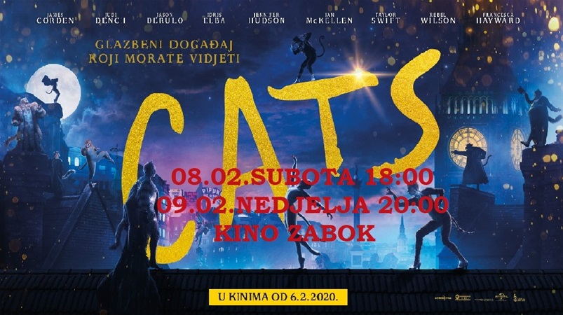 Cats 2